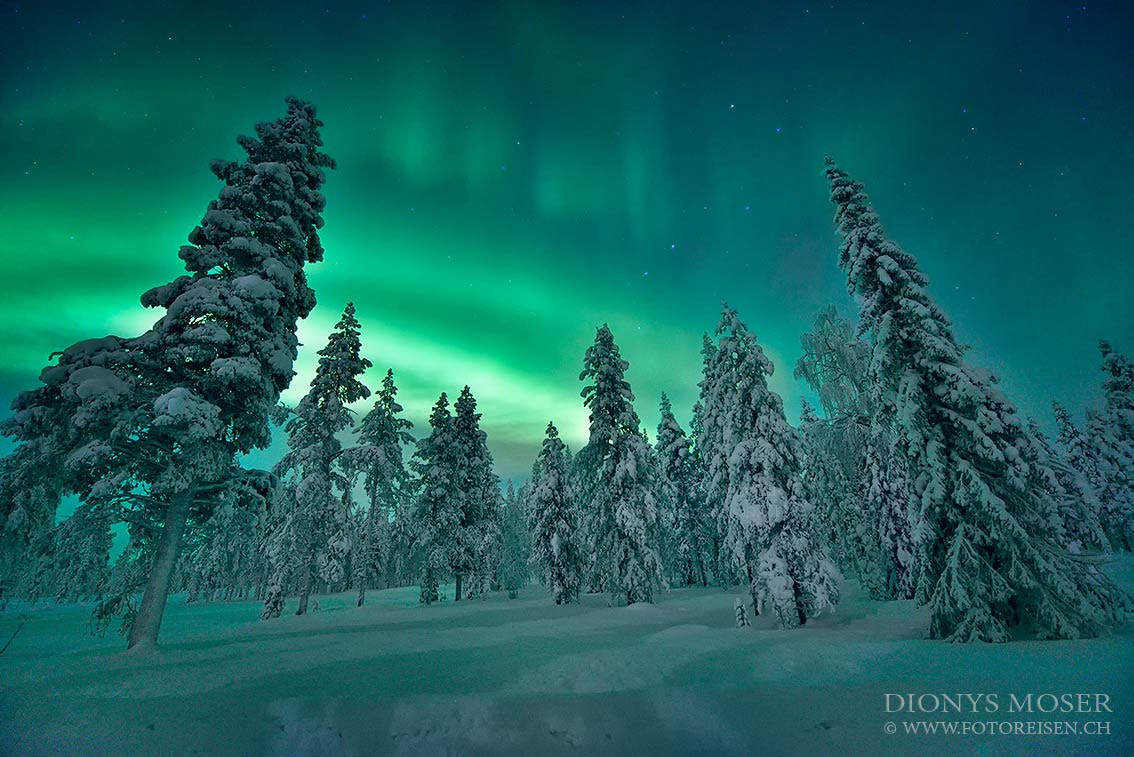 Photograph Magic nights by Dionys Moser on 500px