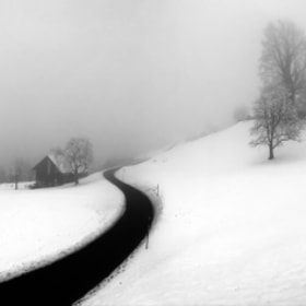 Curve-Snow by Ercan Akkaya (Ercan_Akkaya)) on 500px.com