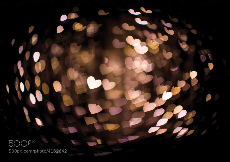 Photograph my love by Magnus Borka Kloster-Jensen on 500px