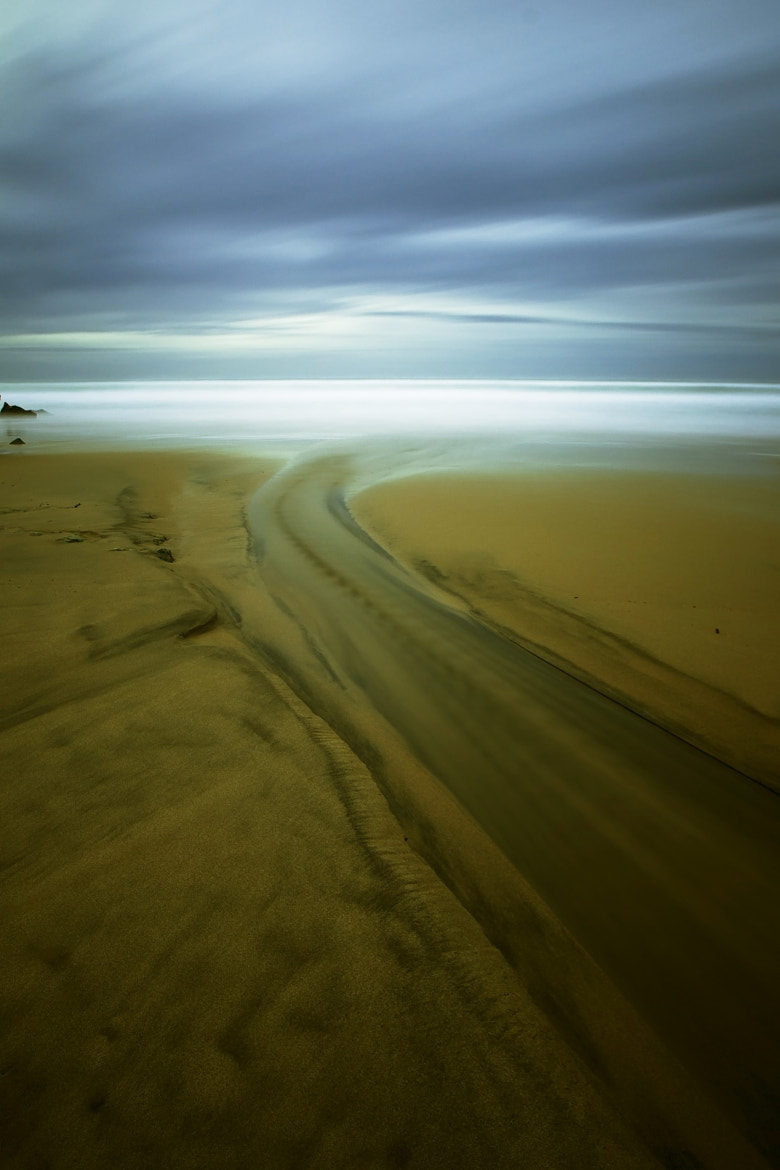 Photograph Path to nowhere... by joaocarlo   on 500px