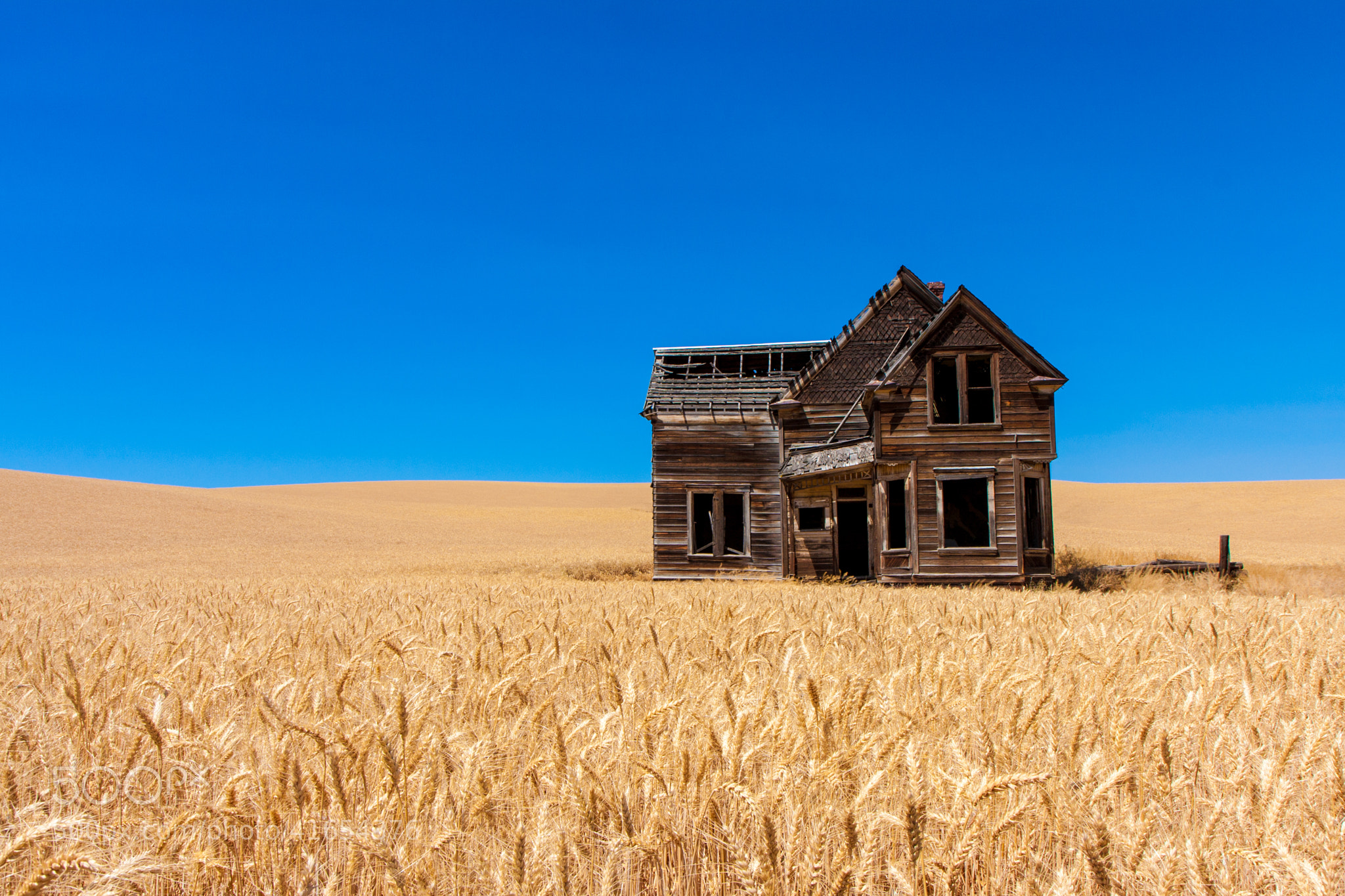 Welcome home an abandoned home surrounded by wheat for Building a home in oregon