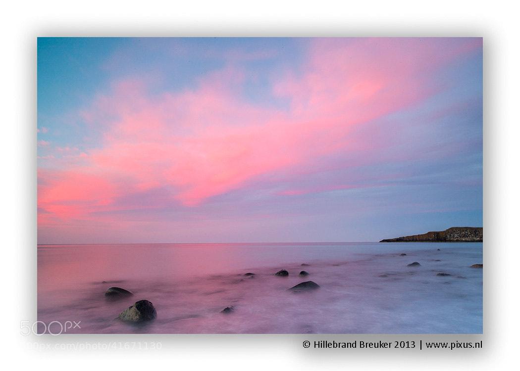 Photograph Pink by Hillebrand Breuker on 500px