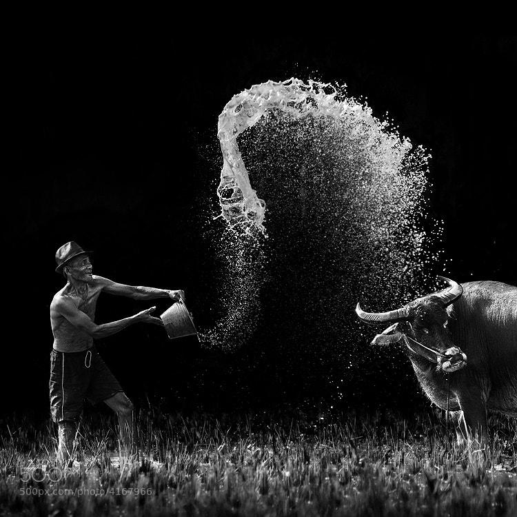 Photograph JOYFUL by Ario Wibisono on 500px