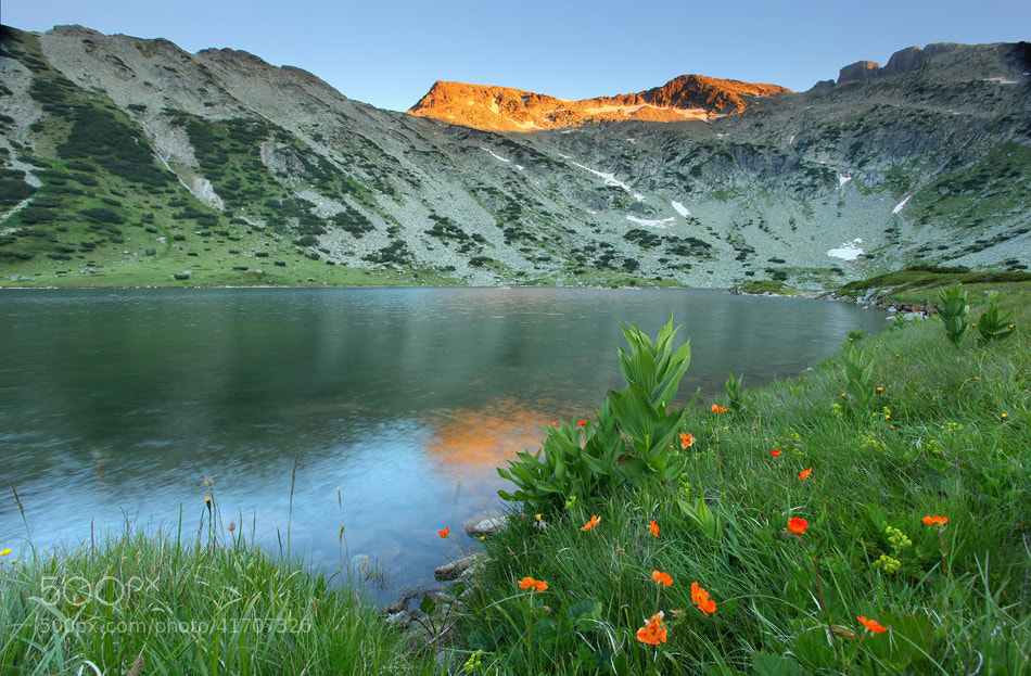Photograph Summer in the Moutains by Pavel Pronin on 500px