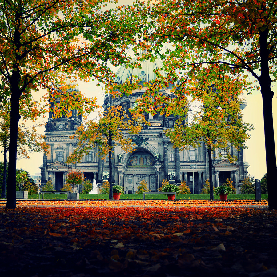 Photograph Berlin in the Fall by Isac Goulart on 500px