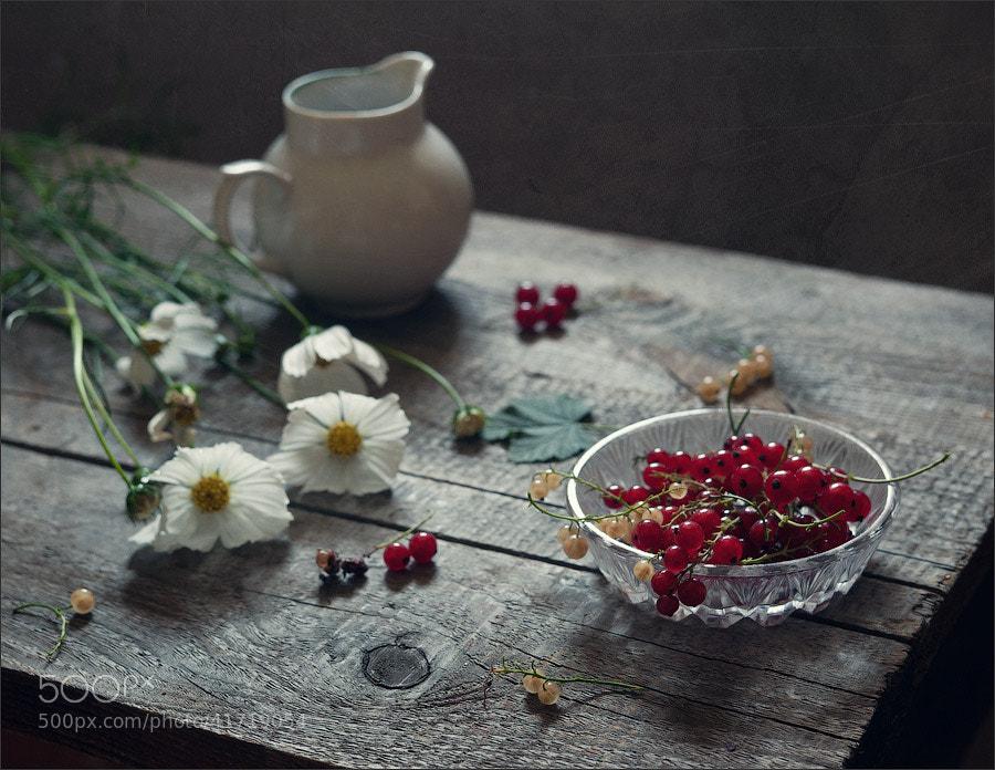 Photograph * by Elena Khazina on 500px