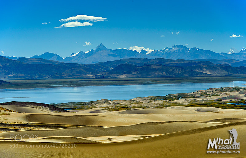 Photograph Tibet Dunes by Mihai Moiceanu on 500px
