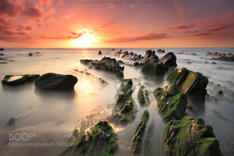 Photograph LIGHT PATH by Raquel de Castro on 500px