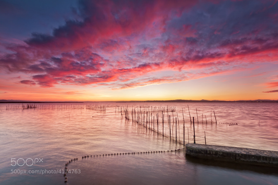 Photograph Red sunset by Jose Beut on 500px