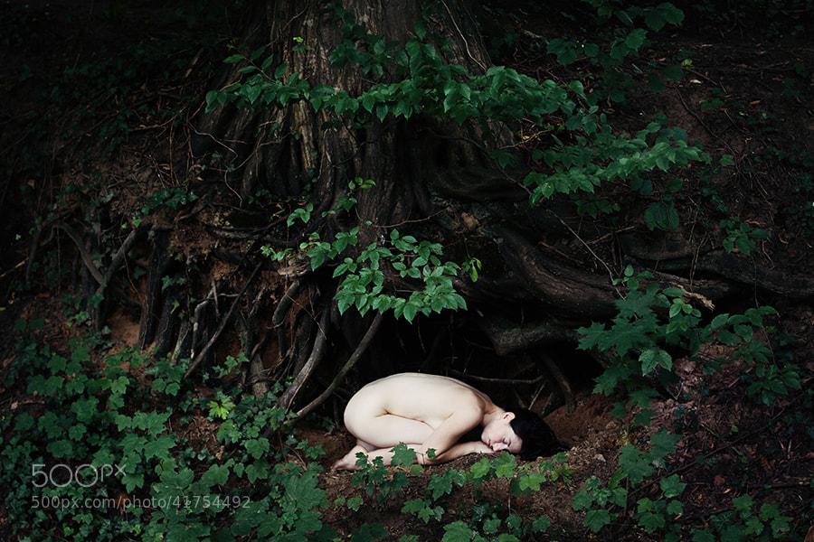 Photograph * by Katja Kemnitz on 500px
