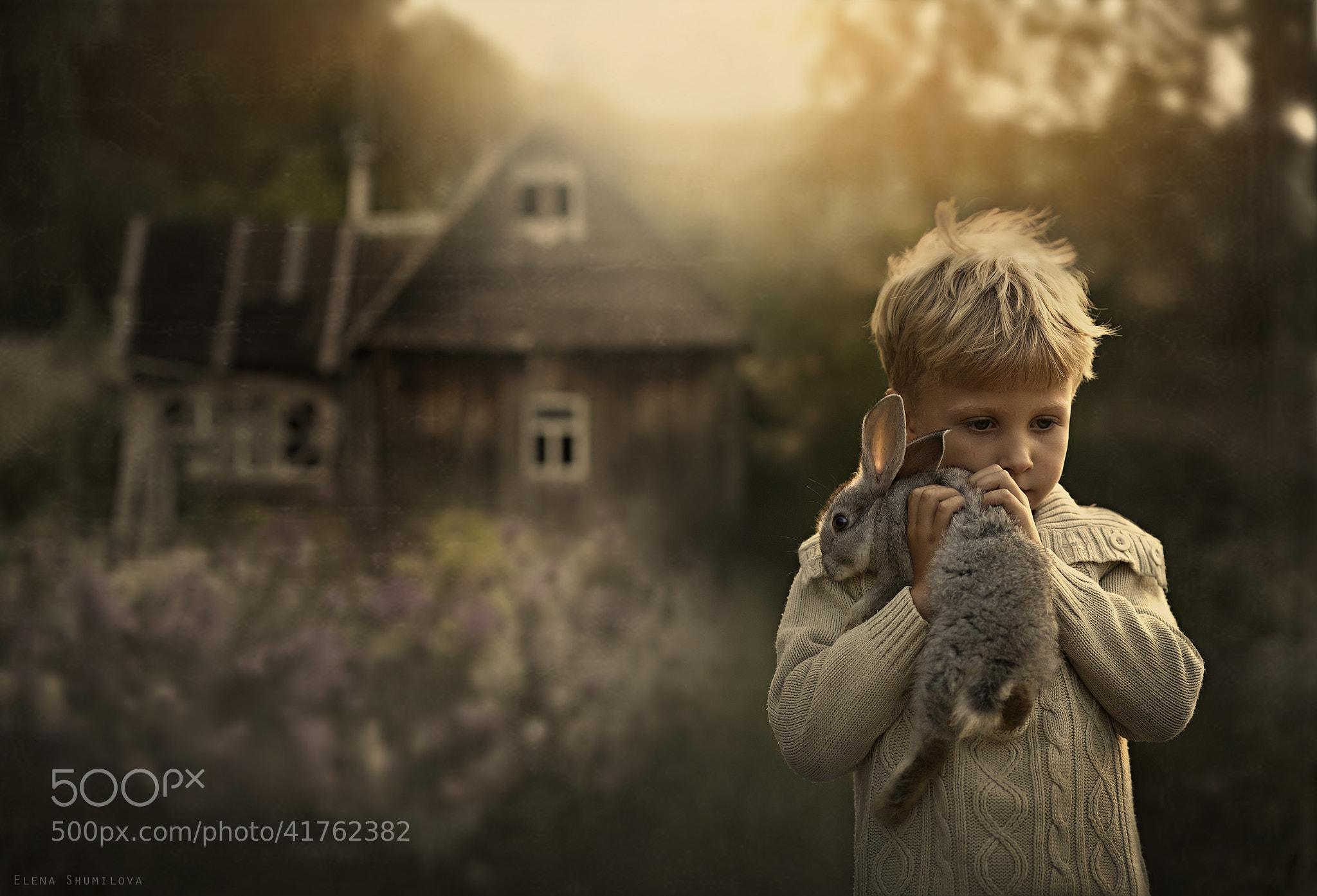 Photograph ...escape... by Elena Shumilova on 500px