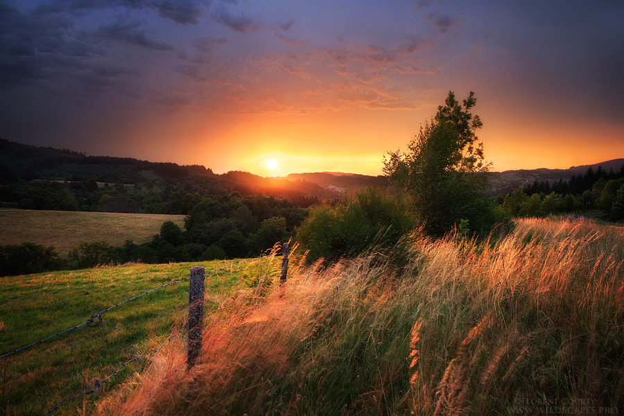 Photograph Summer Jokes by Florent Courty on 500px
