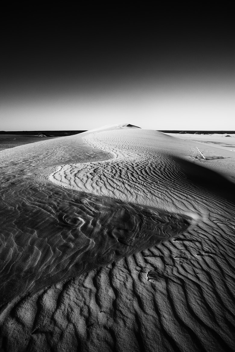 Photograph Mungo by Thomas Poole on 500px