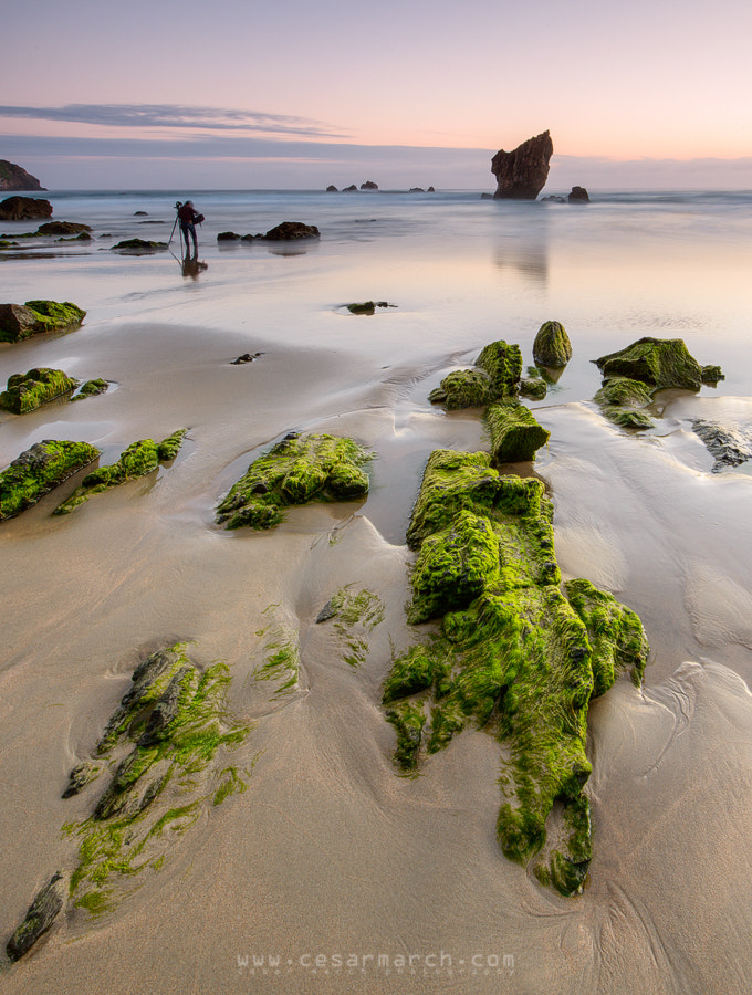 Photograph Looking for the filters (Raquel de Castro) by Cesar March on 500px