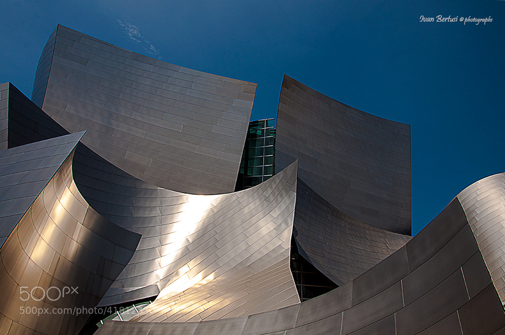 Photograph Walt Disney Concert Hall by Ivan Bertusi on 500px