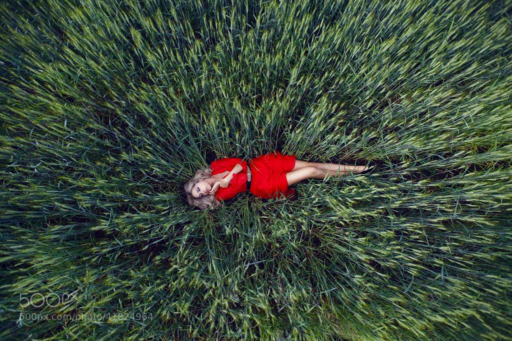 Photograph To be found by Olga Safonova on 500px
