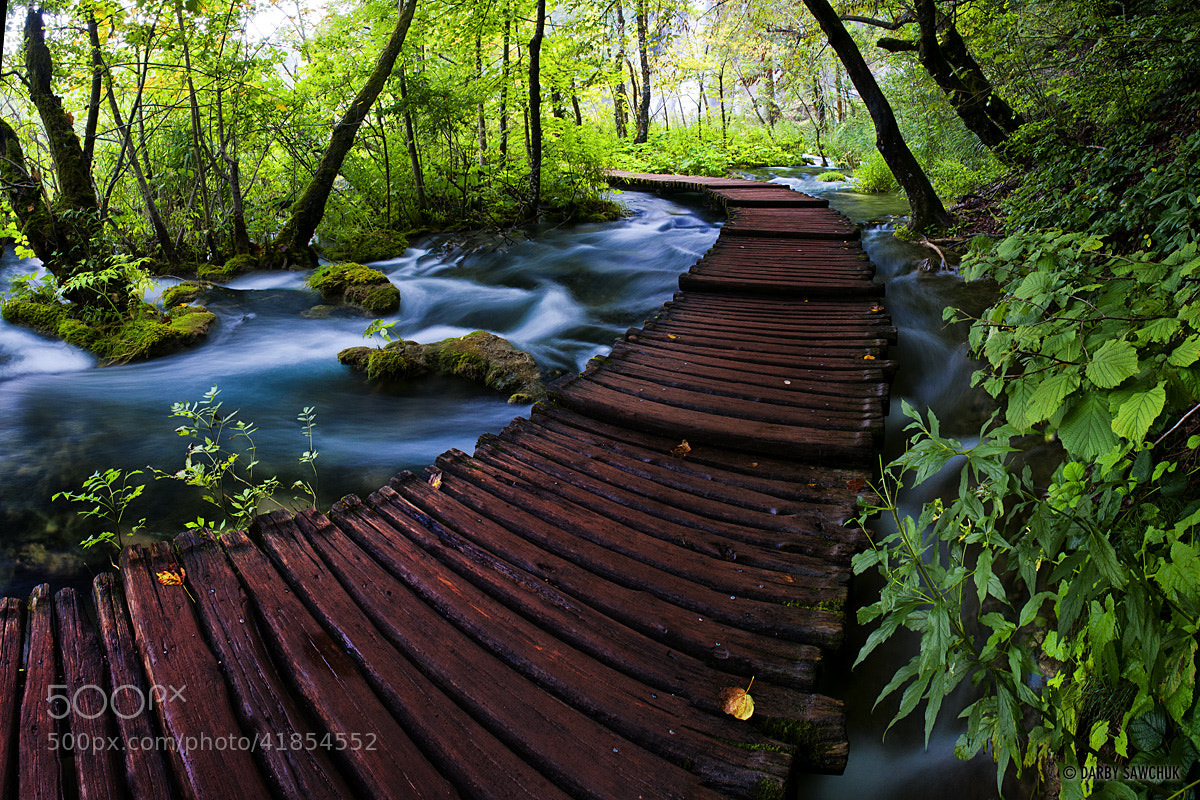 Photograph Plitvice Walkway by Darby Sawchuk on 500px