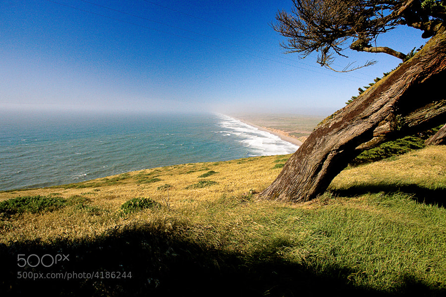 Photograph Point Reyes by Jack Booth on 500px