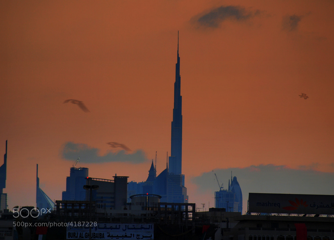 Photograph The Burj Khalifa ..standing tall ... by Ruchir Mathur on 500px
