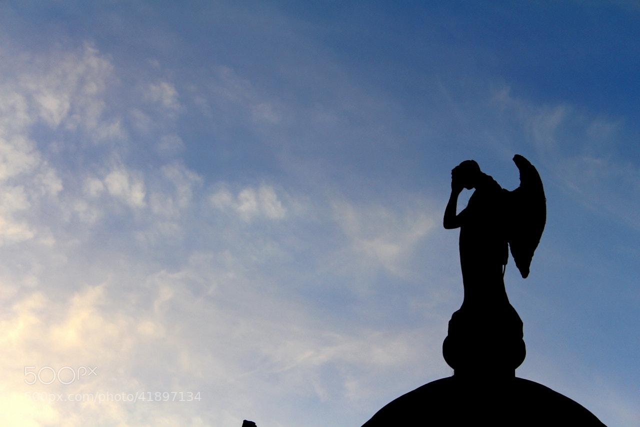 Photograph Dark Angel by Hugo Desch on 500px