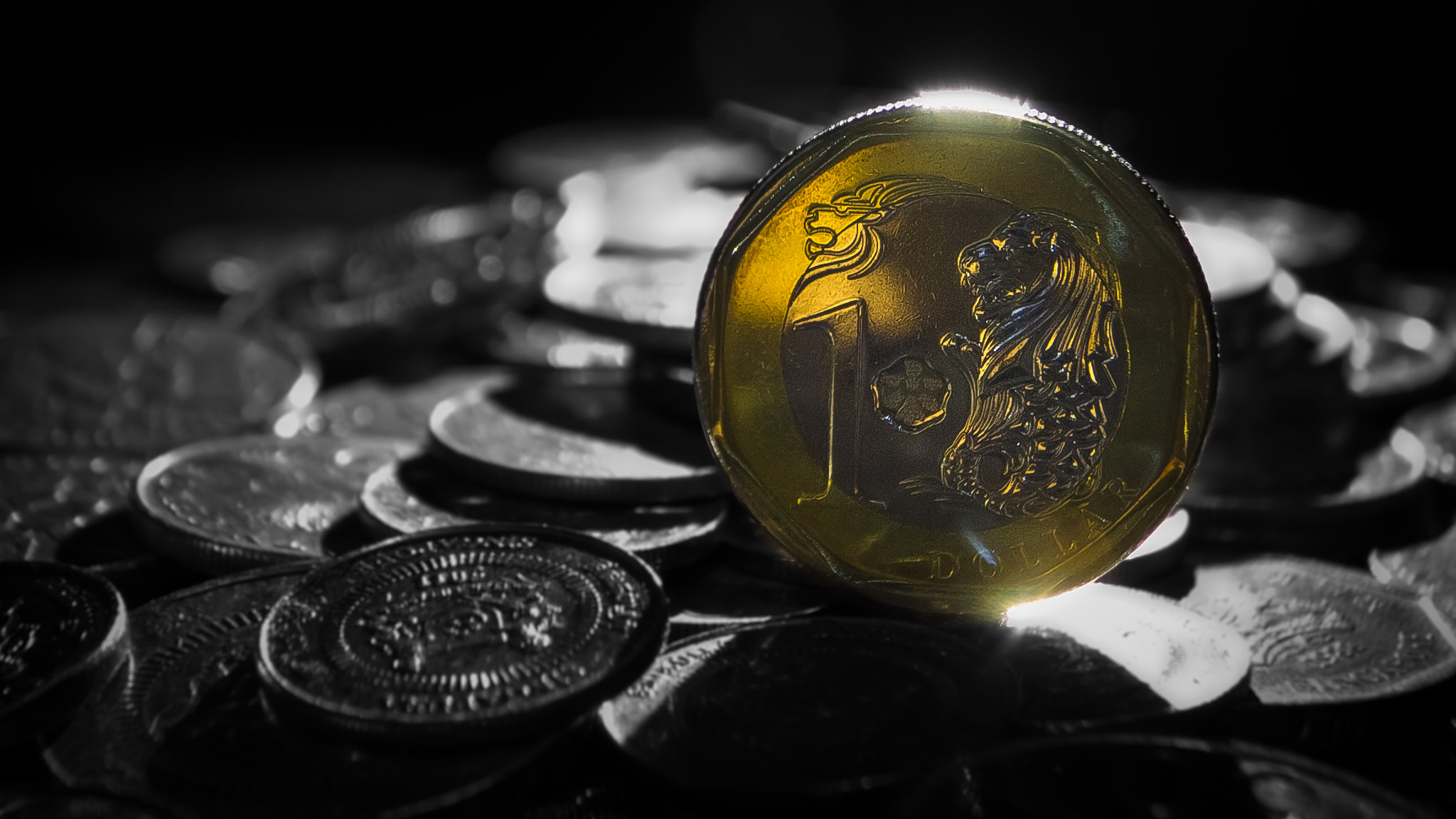 Photograph New Singapore $1 Coin 2013 Edition by Teelip Lim on 500px