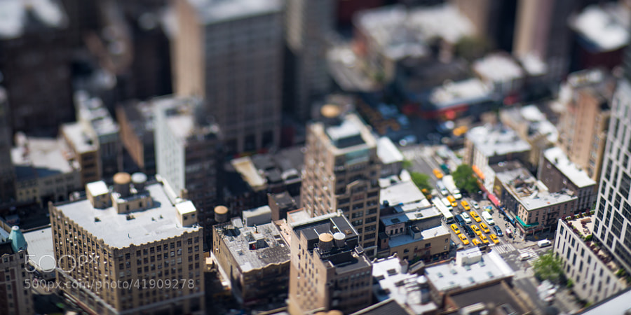 Photograph Little cabs by Damien Bapst on 500px