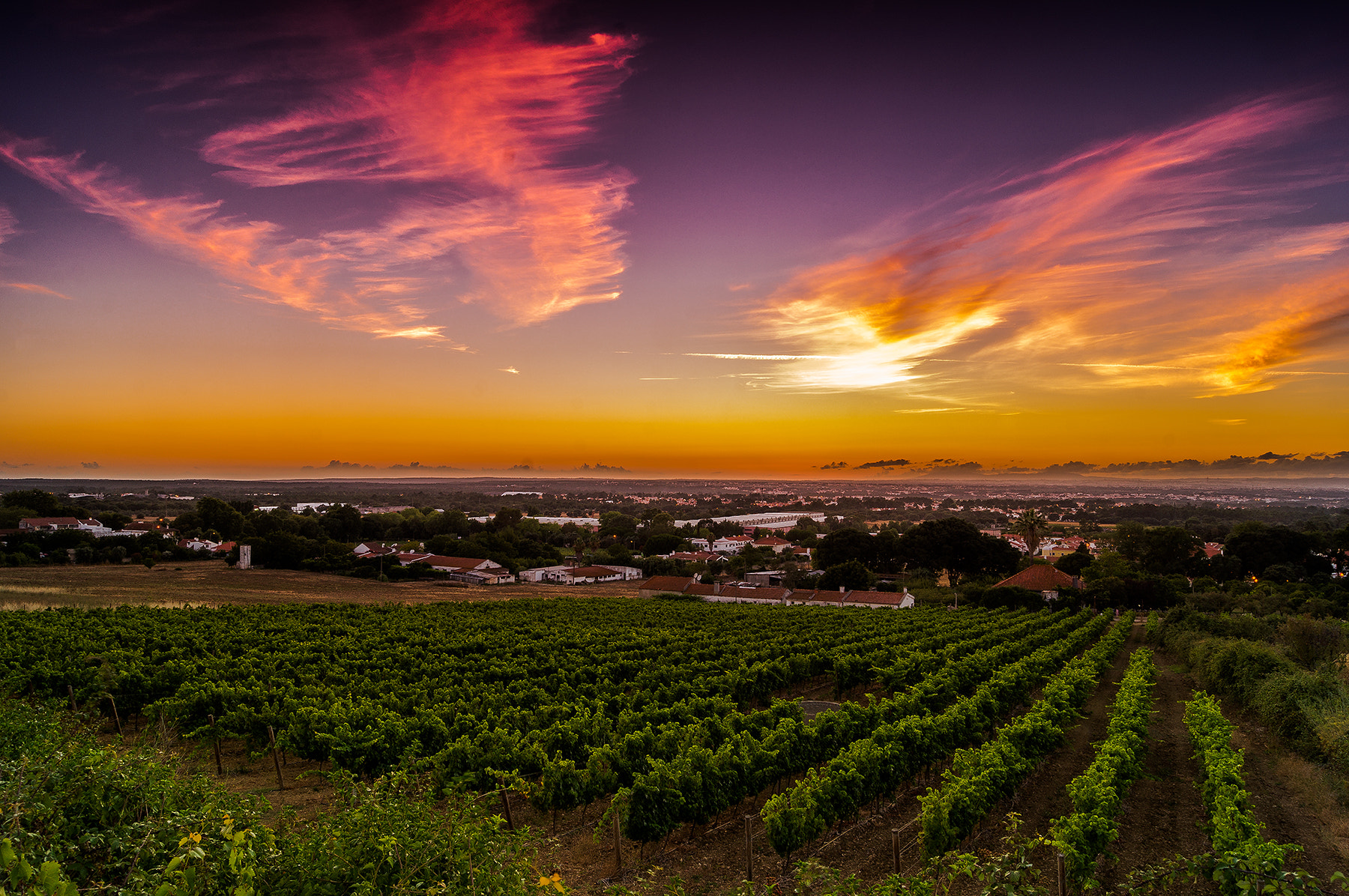 Photograph Magic sky II by Emanuel Fernandes on 500px