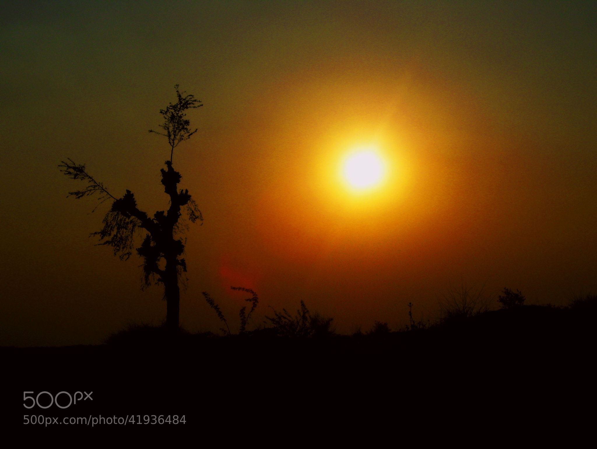 Photograph Untitled by Hitesh Singhal on 500px