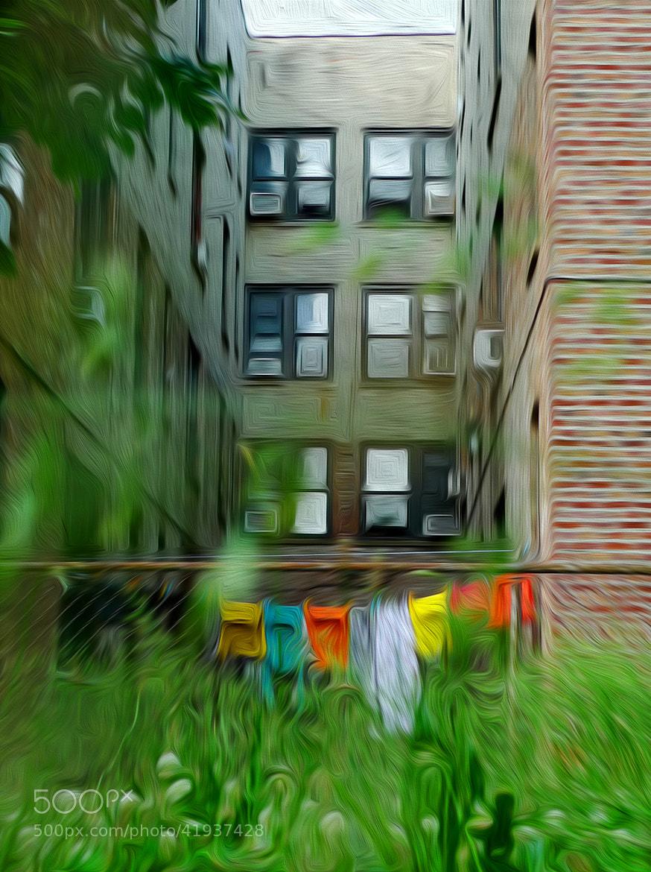 Photograph Brooklyn's backyard green by Larissa Beniaminova on 500px