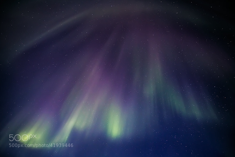 Photograph Aurora Rain by Sarah Marino on 500px