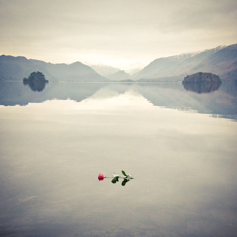 Photograph Romance is dead by Tim Brook on 500px