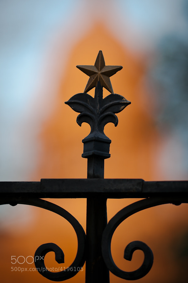 Detail from the metal fence around the property of the Texas Capitol.  Taken at sunset, the dome of the capitol is providing the golden color in the background.