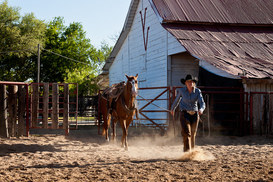 Cowgirl brings a horse into a corral
