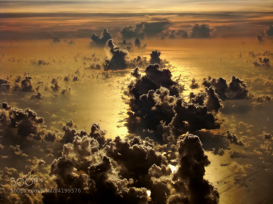 Photograph Heaven by Marcelo Vieira on 500px