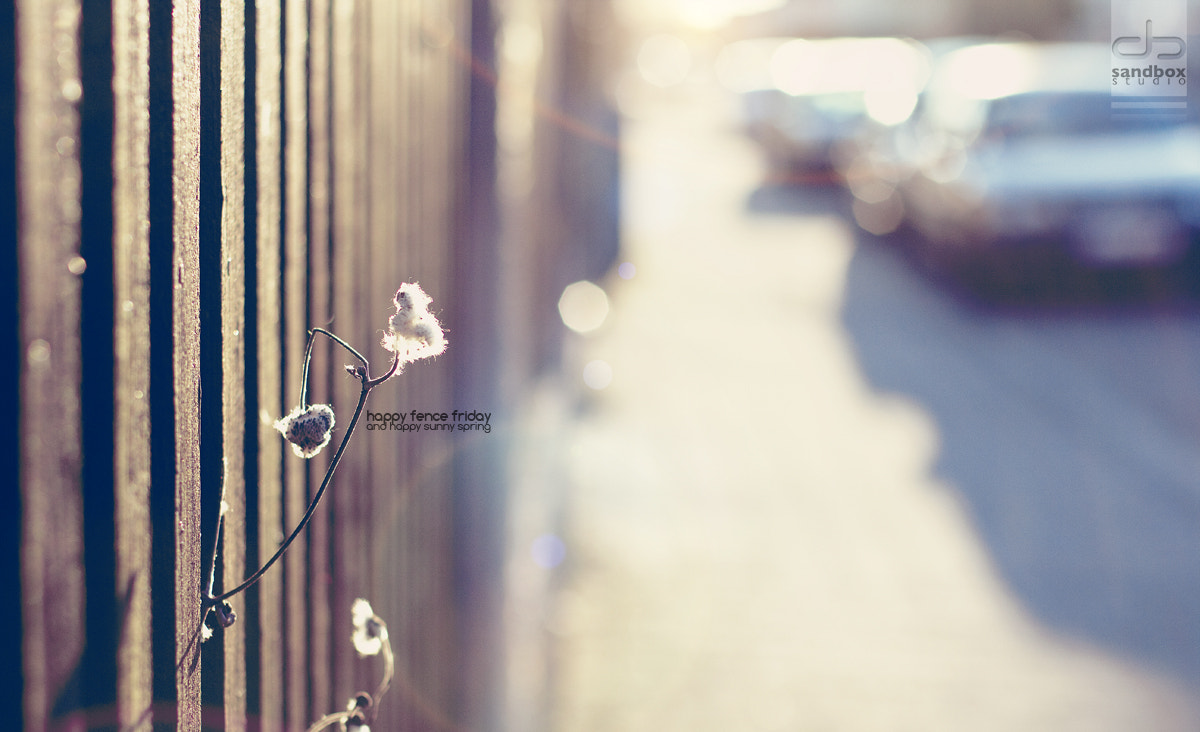 Photograph happy fence friday by Christopher Wesser on 500px