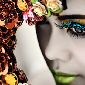 peacock lashes by nelly putnam (nellyputnam)) on 500px.com