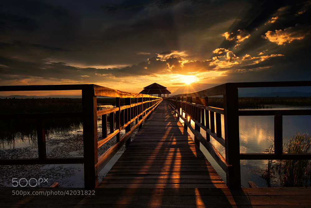 Photograph My bridge by pick chon on 500px