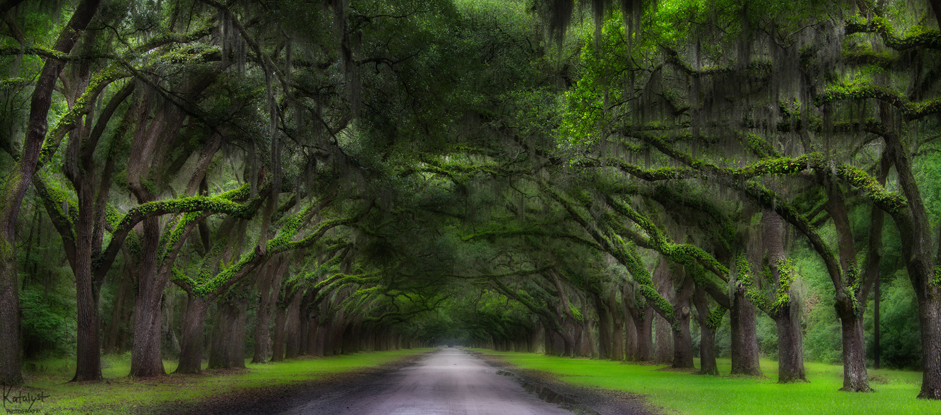 Photograph Enchanted Path by Long Weekend Photography on 500px
