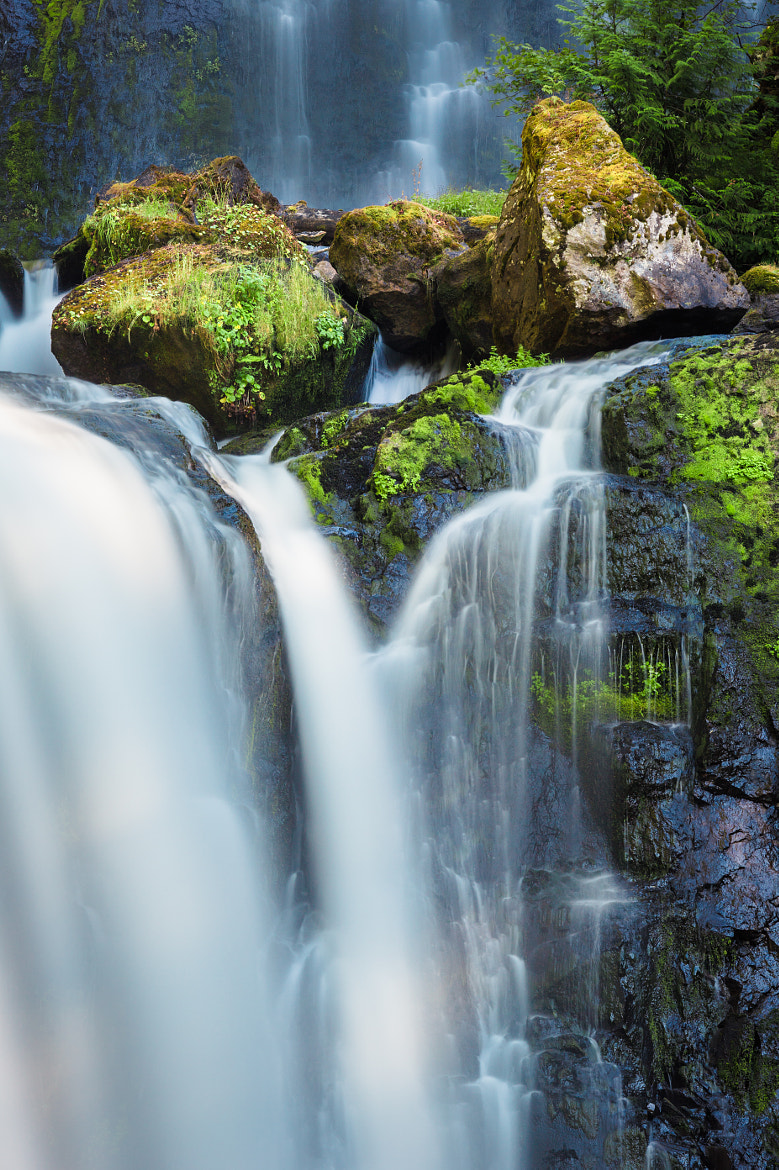 Photograph Falls Creek Falls by Nicole S. Young on 500px