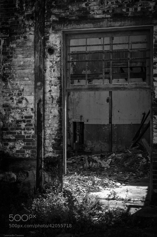 Photograph The door by Leonardo Tavares on 500px