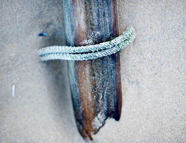 Photograph Sand Wood Rope - Entwined by IainGordon on 500px