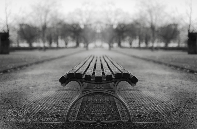Photograph bench by Malte Kuchta on 500px