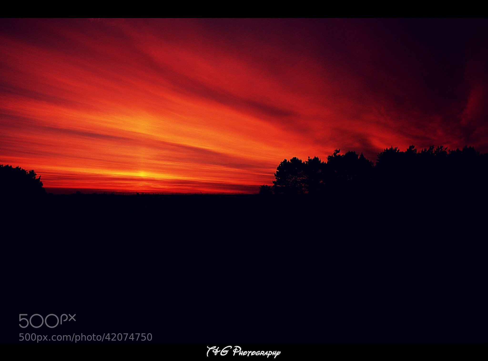 Photograph Sunset silhouette by T&G Photography  on 500px