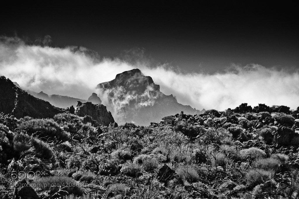 Photograph Teide B&W by Jürgen Meinelt on 500px