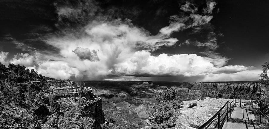 The Grand Panorama