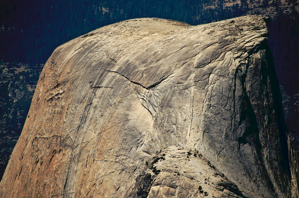 Photograph Half Dome Cables by Michael Sheltzer on 500px