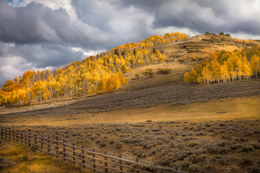 Photograph Falling Colorado by Valerie Millett on 500px