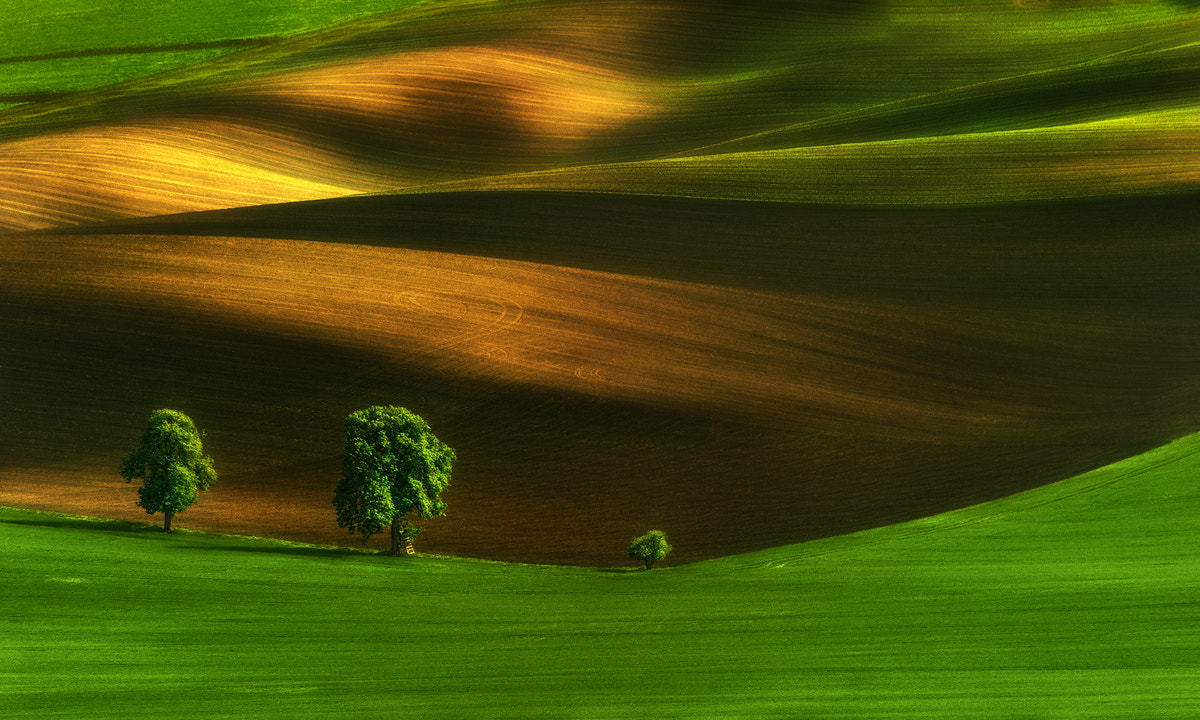 Photograph ...and the little One by Pawel Kucharski on 500px