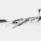 snowy Rantum
