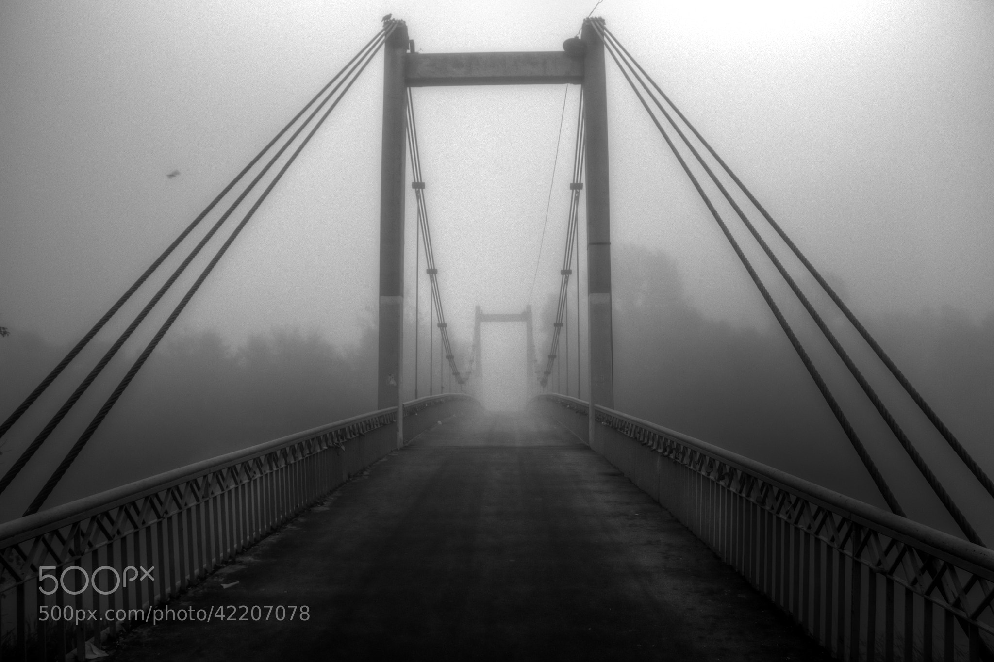 Photograph Misty way... by Aleksei Malygin on 500px